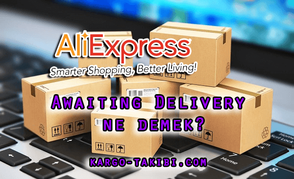 Aliexpress Awaiting Delivery Ne Demek?